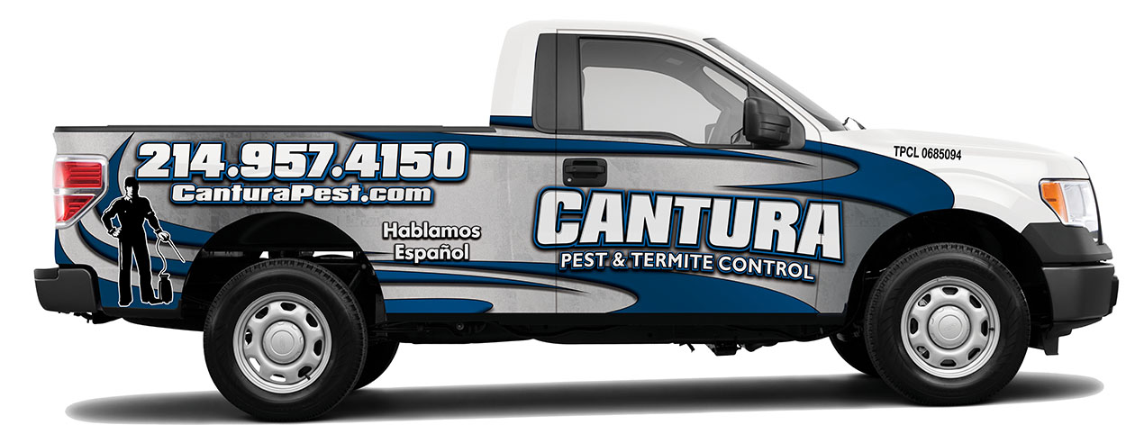 Cantura Pest Services